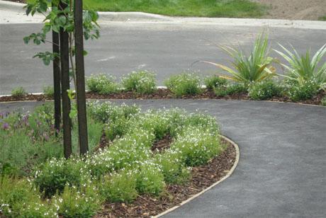Land landscape architects queenstown lodge hotel for Garden design queenstown